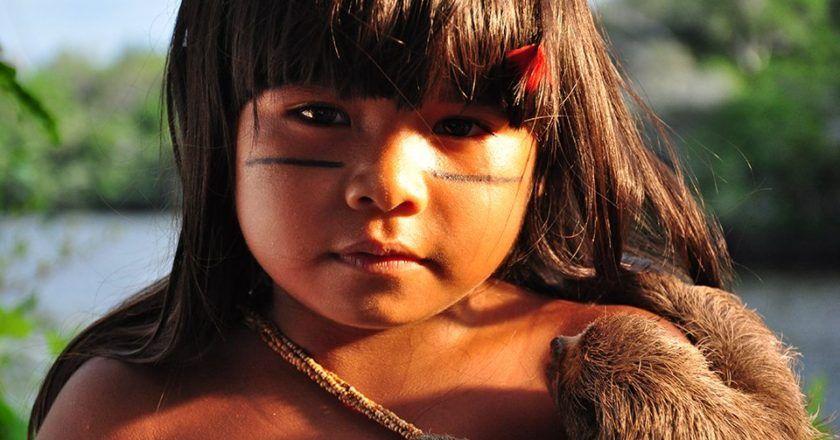 taina - amazonės legenda, 2014, tvjff